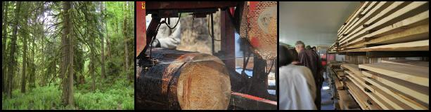 Local Lumber