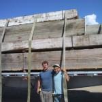 Ship Timbers a