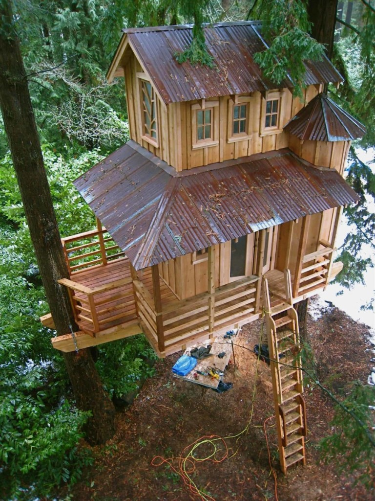 tree house pictures. Photos Tree House Pictures K